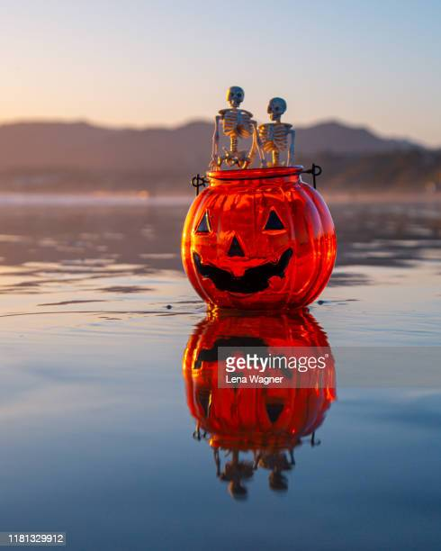 two skeletons in pumpkin - lena spoof stock pictures, royalty-free photos & images