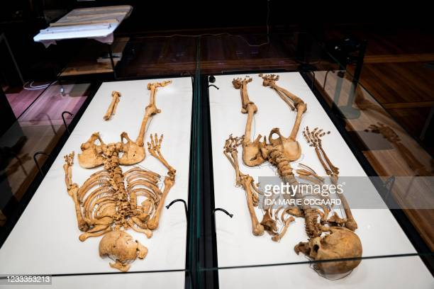 Two skeletons lie in a showcase at The National Museum of Denmark Wednesday, June 9, 2021 in Copenhagen. - The skeleton of a Viking-era man in his...