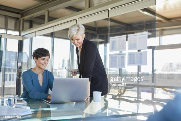 two smiling businesswomen sharing laptop at desk in office - german short haired pointer stock pictures, royalty-free photos & images