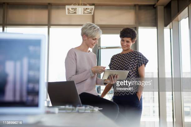 two smiling businesswomen sharing tablet in office - german short haired pointer stock pictures, royalty-free photos & images