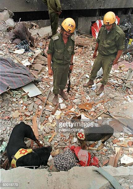 Two soldiers of the Israeli Army watch as two sniffing dogs uncover a dead woman on the top of the collapsed building next to the US Embassy in...