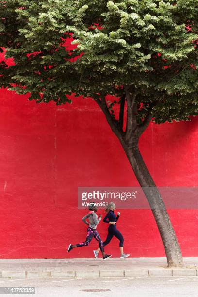 two sporty young women running together in the city passing red wall - laufwettbewerb der frauen stock-fotos und bilder