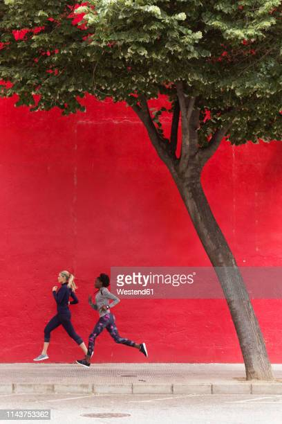 two sporty young women running together in the city passing red wall - center athlete stock pictures, royalty-free photos & images