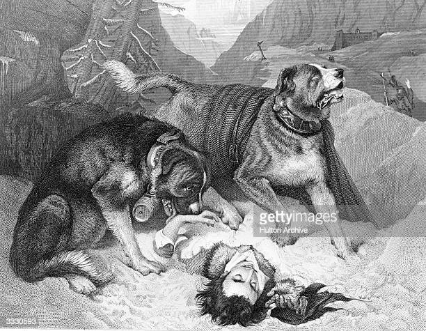 Two St Bernard dogs beside an injured climber they have found in the snow Original Artwork Engraving after work by Baxter