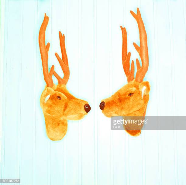 Two stag heads and antlers (cuddly animals)