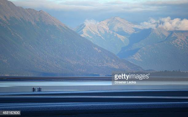 Two sufters walk through the mud flats to get in position before the Bore Tide comes in at Turnagain Arm on July 14 2014 in Anchorage Alaska Alaska's...