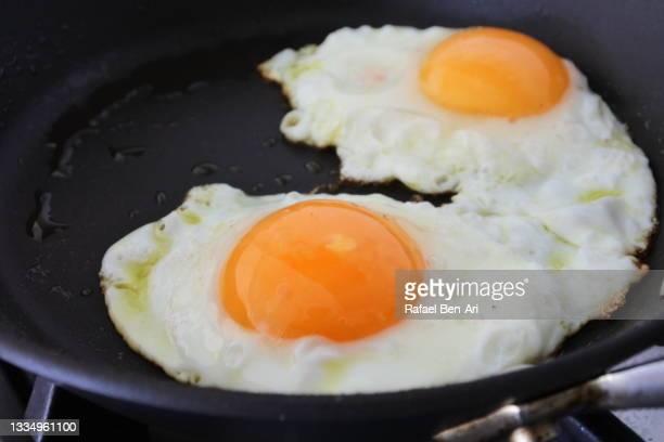two sunny side up eggs - rafael ben ari - fotografias e filmes do acervo