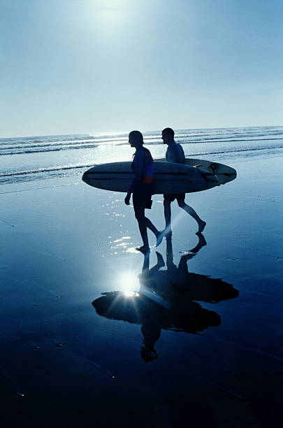 Two surfers holding surfboards, walking on beach, silhouette