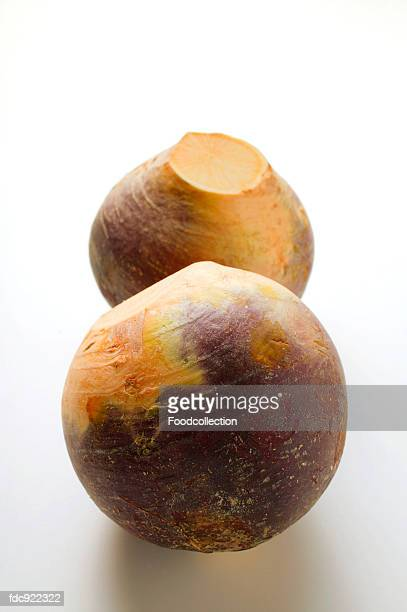 two swedes - rutabaga stock pictures, royalty-free photos & images
