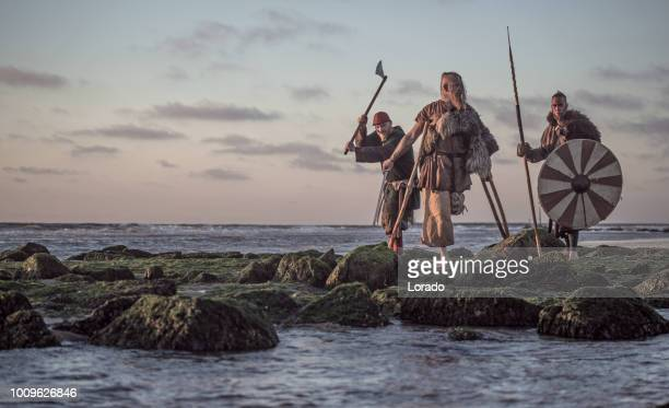 two sword wielding bloody medieval warriors together on a cold seashore - northern european descent stock pictures, royalty-free photos & images