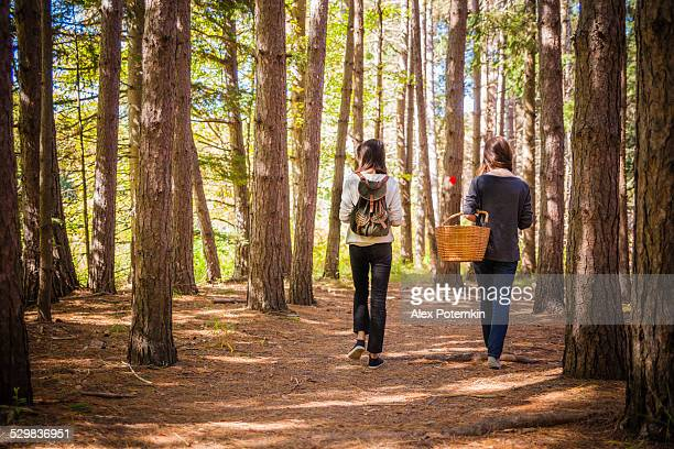 two teenager girl hiking in the forest - pocono mountains stock pictures, royalty-free photos & images
