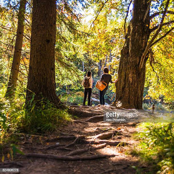 two teenager girl in the forest next to the river - pocono mountains stock pictures, royalty-free photos & images