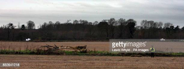 Levington Stock Photos and Pictures | Getty Images