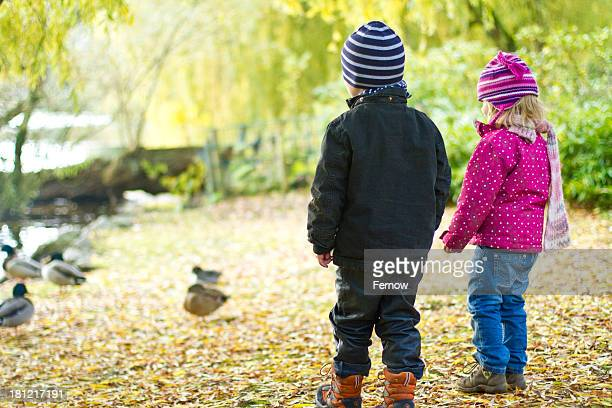 Two toddlers watching ducks in autumn