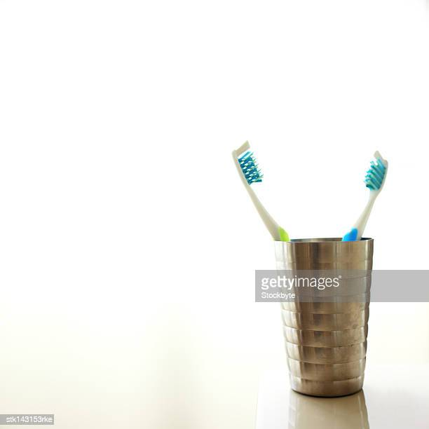 two toothbrushes in a toothbrush holder