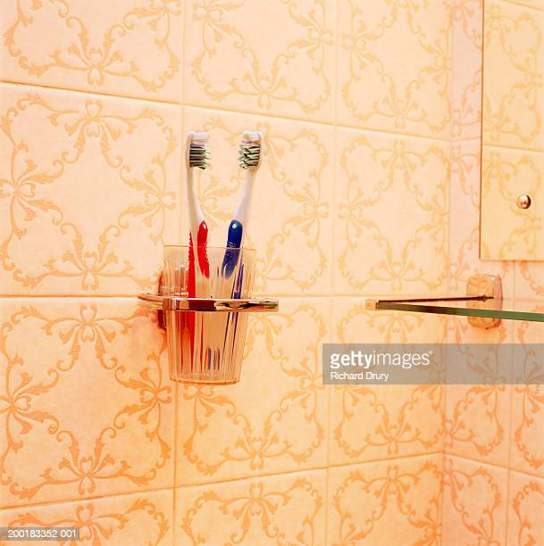 two toothbrushes in holder on bathroom wall, close-up - his and hers stock pictures, royalty-free photos & images