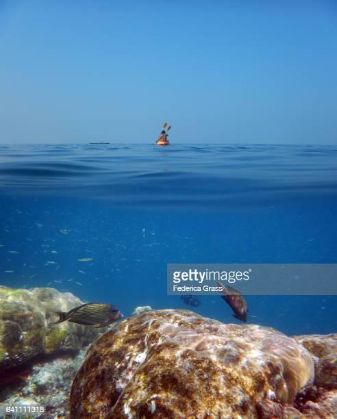 Two Tourists Canoeing On Maldivian Atoll