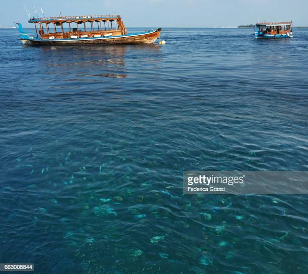 Two Traditional Maldivian Boats And Shoal Of Blue Fusilier Fish