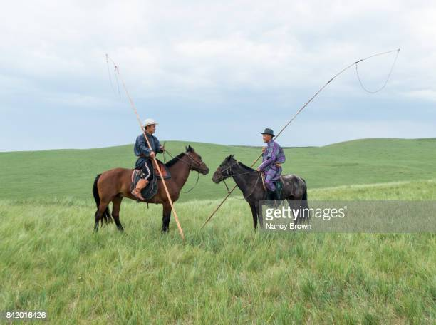 two traditional mongolian horsemen in grasslands in inner mongolia china. - nancy green stock pictures, royalty-free photos & images