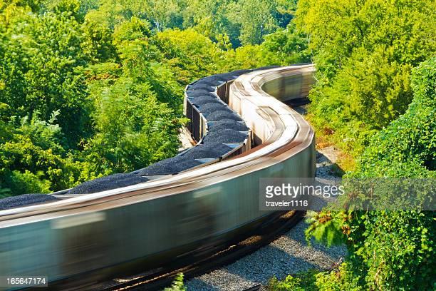 Dois comboios a atravessar a floresta