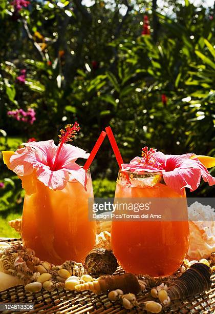 two tropical drinks garnished with flowers in an outdoor setting. - garnish stock pictures, royalty-free photos & images