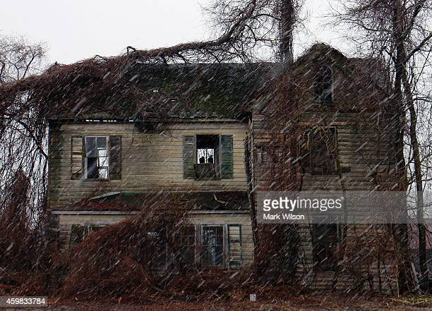Two Turkey Buzzards stay out of the weather while stting in the window of an abandoned farmhouse March 30 2014 in Owings Maryland