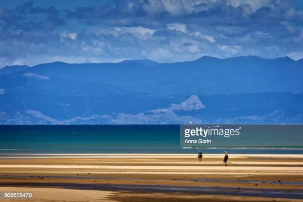 Two unrecognizable equestrians ride along beach at Abel Tasman National Park with mountains in background, South Island New Zealand