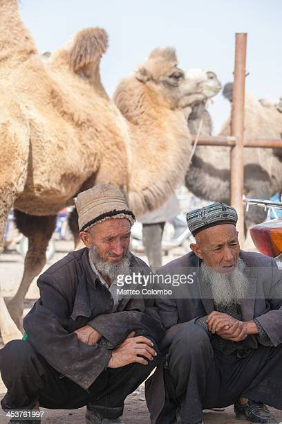 CONTENT] Two uyghur ethnic minority old men at Kashgar sunday livestock market with camels in the background in the autonomous chinese region of...