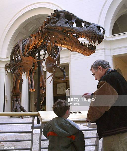Two visitors stop to look at Sue the largest most complete and best preserved Tyrannosaurus Rex fossil yet discovered outside the Tiniest Giants...