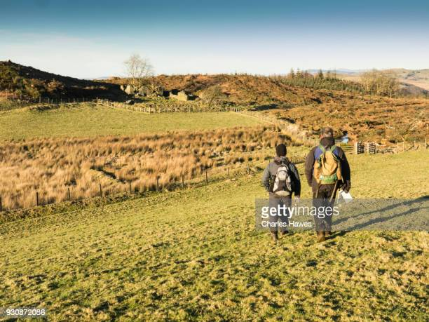Two walkers near Bryneithinoig, Ceredigion. The Cambrian Way, Wales, UK