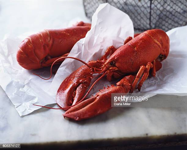 two whole wet fresh lobsters on paper and marble - homard photos et images de collection