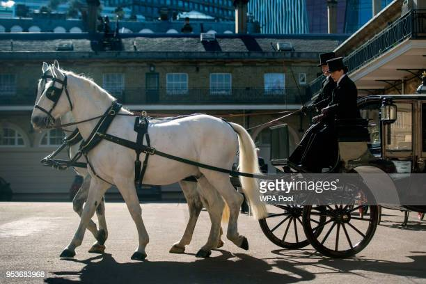 Two Windsor Greys which will pull the carriage at the wedding of Prince Harry and Meghan Markle at the Royal Mews at Buckingham Palace on May 1 2018...