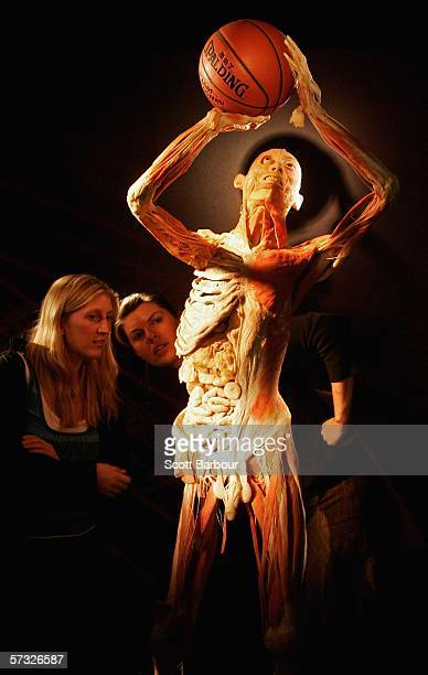 Two woman examine a body specimen during the BodiesThe Exhibition on April 12 2006 in London England The exhibition gives the public the unique...