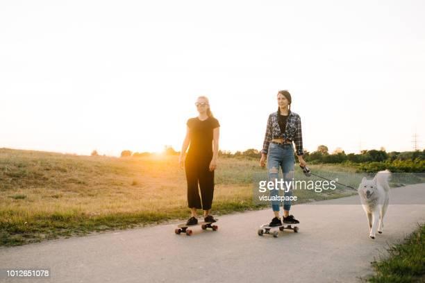 zwei frau reiten longboards mit hund - longboard skating stock-fotos und bilder