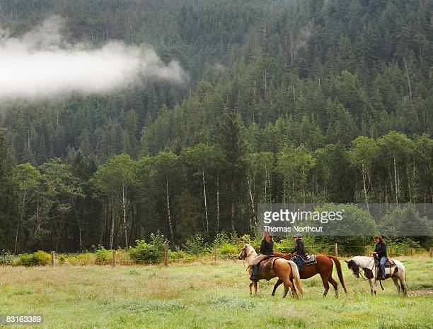 two women and a girl horseback riding in field - horseback riding stock pictures, royalty-free photos & images