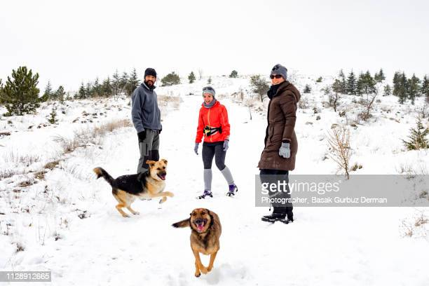 Two women and a man having a good time with dogs outside in winter
