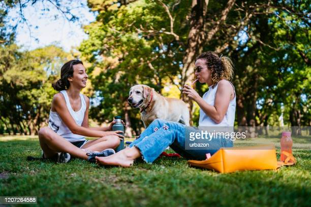 two women and dog relaxing in park - off leash dog park stock pictures, royalty-free photos & images