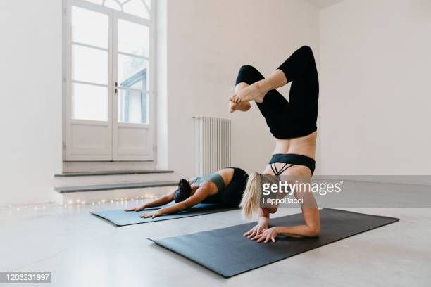 two women are practicing yoga together with scorpion and mudrasana positions - handstand stock pictures, royalty-free photos & images