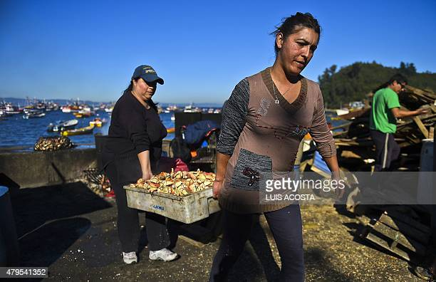 Two women carry a box with crabs in 'Caleta Tumbes' cove Concepcion some 519 km south of Santiago on July 1 2009 Chile's 4300 km long coastline is...