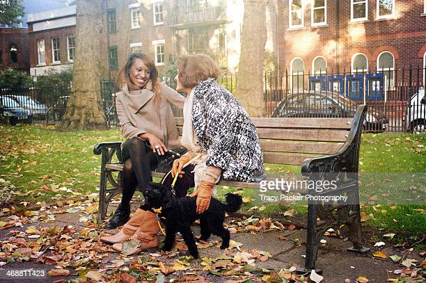 two women chat together in a park - um animal - fotografias e filmes do acervo