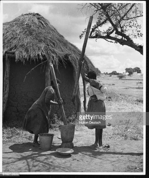Two women crush corn outside a thatched hut