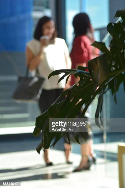two women having a conversation in building lobby - rafael ben ari stock-fotos und bilder
