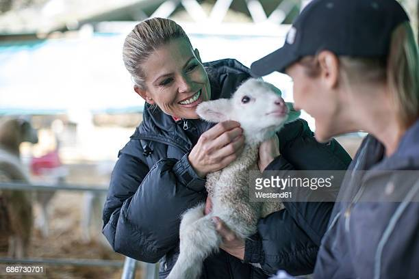 Two women holding little lamb on farm
