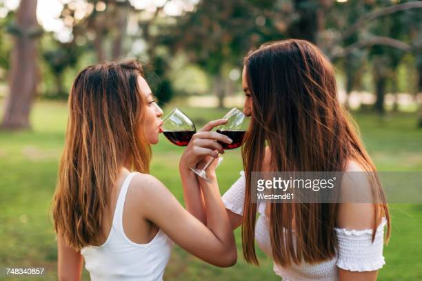 Two women in a park drinking red wine face to face