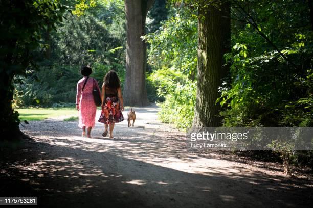 two women in the park walking the dog, seen from behind - showus stockfoto's en -beelden