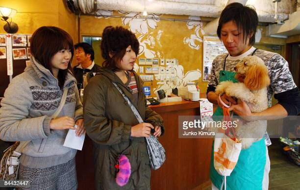 Two women meet a dog they have chosen to hire to spend time with at Puppy The World on January 24 2009 in Tokyo Japan Rentadog is becoming...