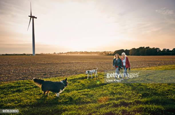 two women on a dog walk in the countryside - landelijke scène stockfoto's en -beelden