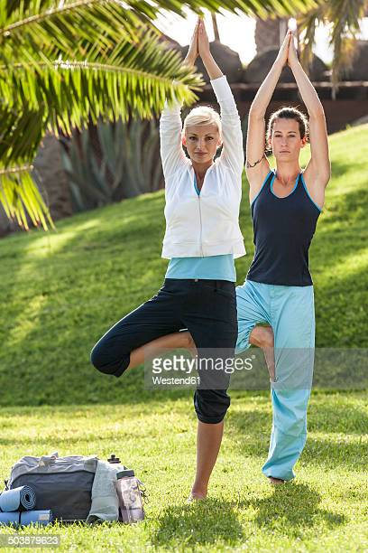 Two women practicing yoga on meadow