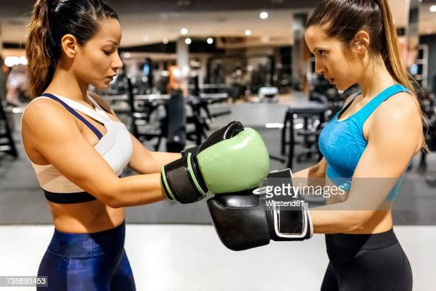 two women preparing for a boxing match in gym - mixed boxing stock photos and pictures