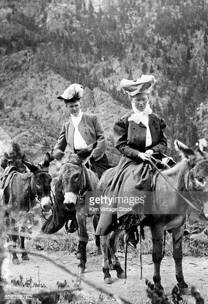 Two women ride side saddle on donkeys climbing in the mountains of California